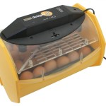 The Very Best Eggs Incubator