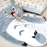 Totoro Bed for Kids