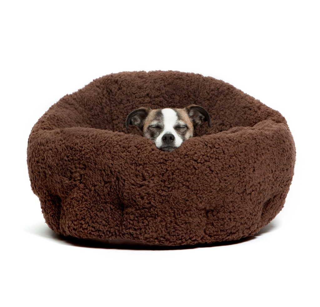The best cheap dog beds mytop10bestsellers for Dog bed beside bed
