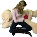 Selection of the Best Valentines Day Gifts